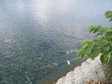 網のブログ-ズガニ漁