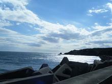 網のブログ-海