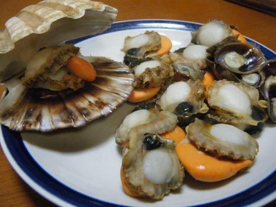 網のブログ-イタヤ貝