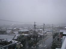 起きたら雪だった