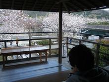 網のブログ-五十鈴茶屋