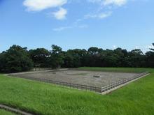 網のブログ-神宮の塩田