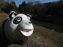 網のブログ-五十鈴公園