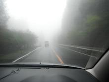 網のブログ-濃霧