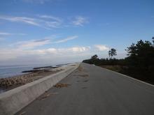網のブログ-海岸