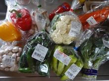 網のブログ-野菜