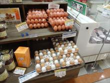 いつもの卵