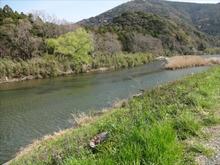 無残な川原